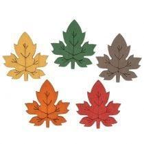 Laub, Blätter & Pilze