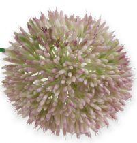 Allium Grün/Rosa mit Ø11,5cm 65cm