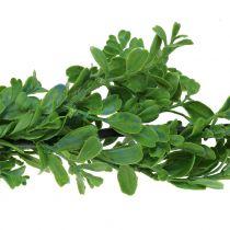 Buchsbaum Girlande Grün 180cm