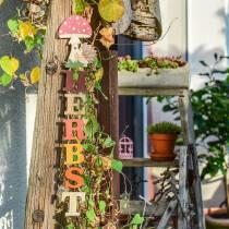 Dekohänger Herbst mit Igel und Pilz 22,5cm x 20cm 4St