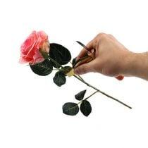 Rosendornen-Entferner mit Messer