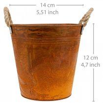 Pflanztopf, Herbstdeko, Metallgefäß mit Edelrost Ø14cm H12cm