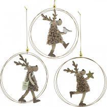 Rentier zum Hängen, Weihnachtsanhänger, Adventsdeko im Ring Ø15cm 3er-Set