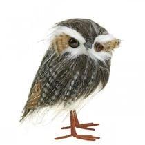 Kauz zum Dekorieren, Herbst, Deko-Vogel, Walddeko H21cm