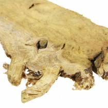 Deko Holzscheiben Natur 1kg