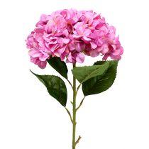 Hortensie Maxi Rosa Ø30cm L113cm