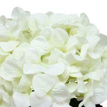 Hortensie Maxi Weiß Ø30cm L113cm