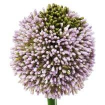 Kunstblumen Allium Lila Ø10cm L65cm