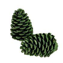 Maritima Zapfen 10cm - 16cm Grün gefrostet 12St
