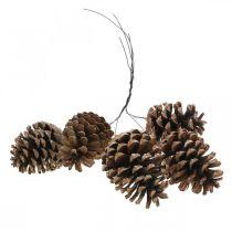 Maritimazapfen mit Draht, Gedenktage, Weihnachtsdeko, Naturprodukt H8–13cm Ø6–9cm 50St