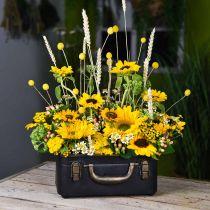 Metallkoffer, Pflanzgefäß, Koffer zum Bepflanzen L30/22,5cm 2er-Set