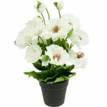 Mohn im Topf Weiß Seidenblumen Blumendeko