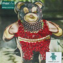 Steckschaum Figur Teddy mit Ständer 48,5cm x 42cm H5cm 1St