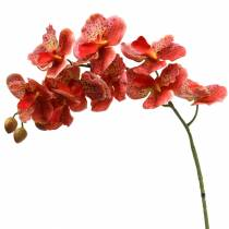 Künstliche Orchidee Phaelaenopsis Rot, Orange H81cm