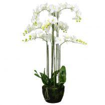 Orchidee Weiß auf Erdballen 118cm