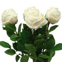 Rose in rosa 65cm 4St