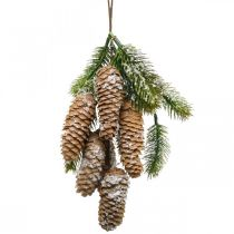 Tannengrün mit Zapfen, Winterdeko, Tannenzweig zum Hängen, Zapfendeko beschneit L33cm