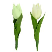 Frühlingsdeko, Künstliche Tulpen, Seidenblumen, Deko-Tulpen Grün/Creme 12St