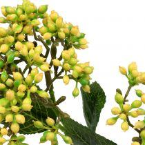 Viburnum Beerenzweig 54cm Gelb 4St