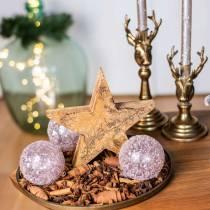 Weihnachtsstern stehend Mango Natur, Golden 20×20×3,5cm