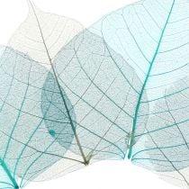 Willowblätter skelettiert Grau, Türkis 200St