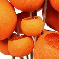 Bell Cup Mix am Stiel Orange 15St