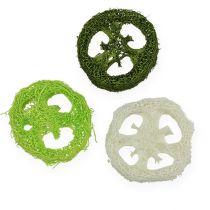 Luffa Scheiben sort. Grün, Weiß 5-7,5cm 24St