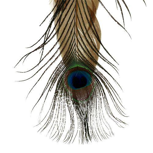 Federhänger sort. Pfauenfeder 34cm 3St
