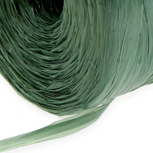 Gärtnerbast Grün 700m 5St