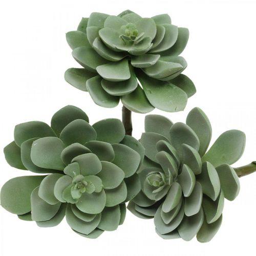 Künstliche Sukkulente Deko Kunstpflanzen Grün 11×8,5cm 3St