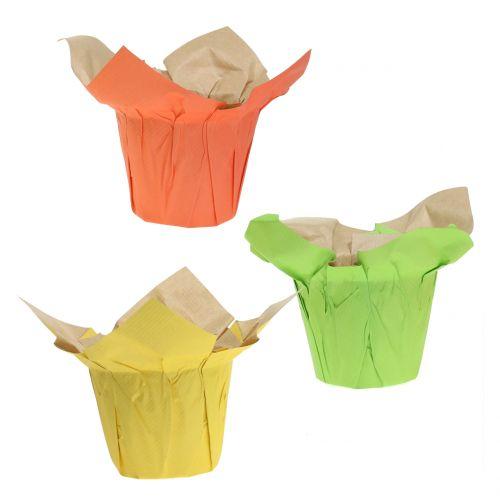 Übertöpfe aus Papier Grün, Orange, Gelb Ø10cm 12St