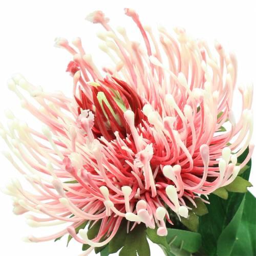 Protea Künstlich Rosa 73cm
