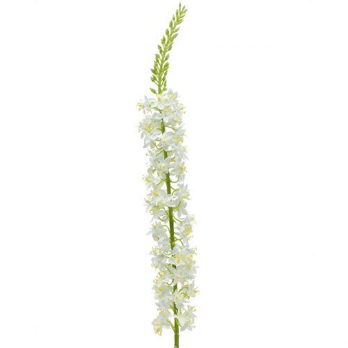 Wüstenschweif Weiß 106cm