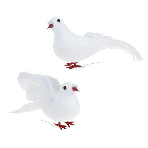 Tauben am Draht Weiß, Tauben am Draht, Dekotaube weiß, Taube ...