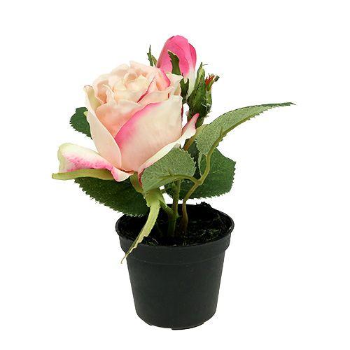 Tischdeko Rose Im Topf Creme 14cm Einkaufen In Osterreich