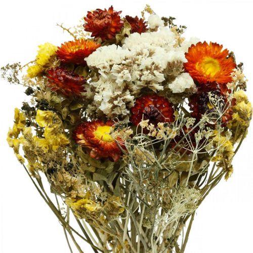 Trockenblumen-Bukett Strohblumen und Strandflieder 125g Trockenfloristik