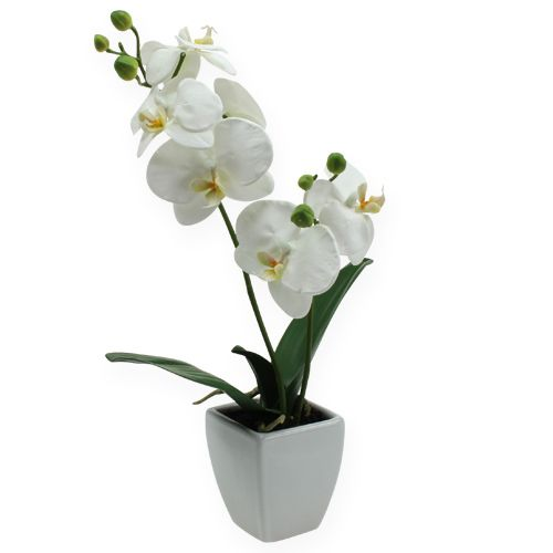 deko orchidee im topf wei 40cm einkaufen in sterreich. Black Bedroom Furniture Sets. Home Design Ideas
