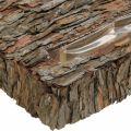 Pflanzbehälter Pinienrinde Herbstdeko Unterlage 35×25cm H6cm